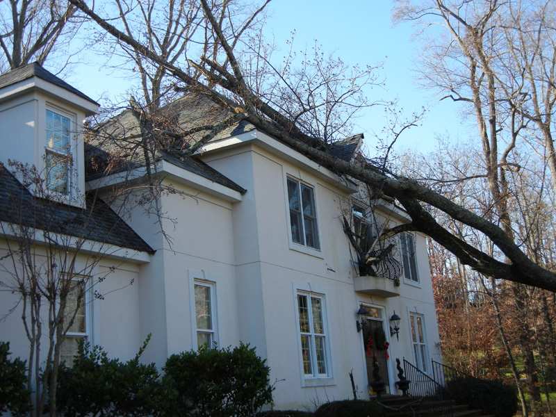 Beautiful home with tree fallen on roof